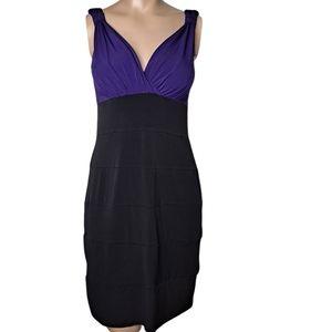 Sweet Storm Body Hugging Purple/Black Dress